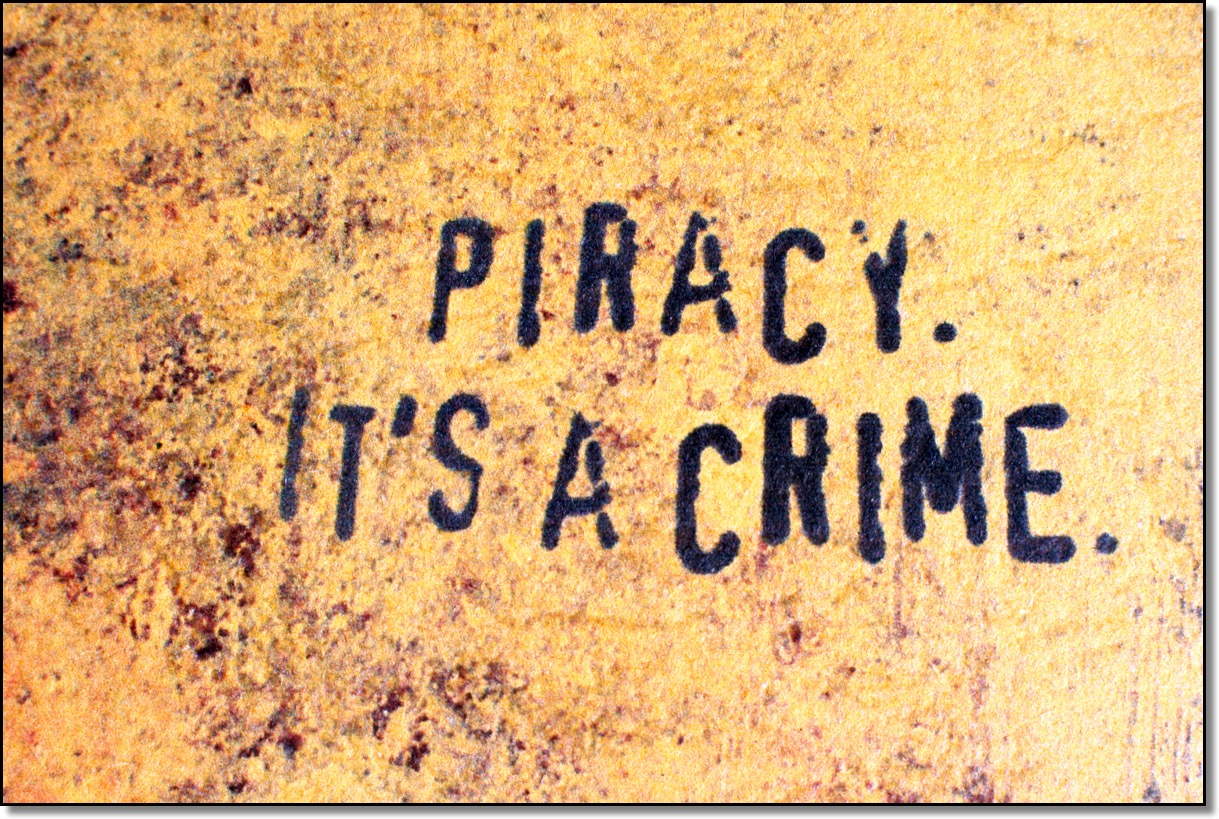 software piracy on the internet essay